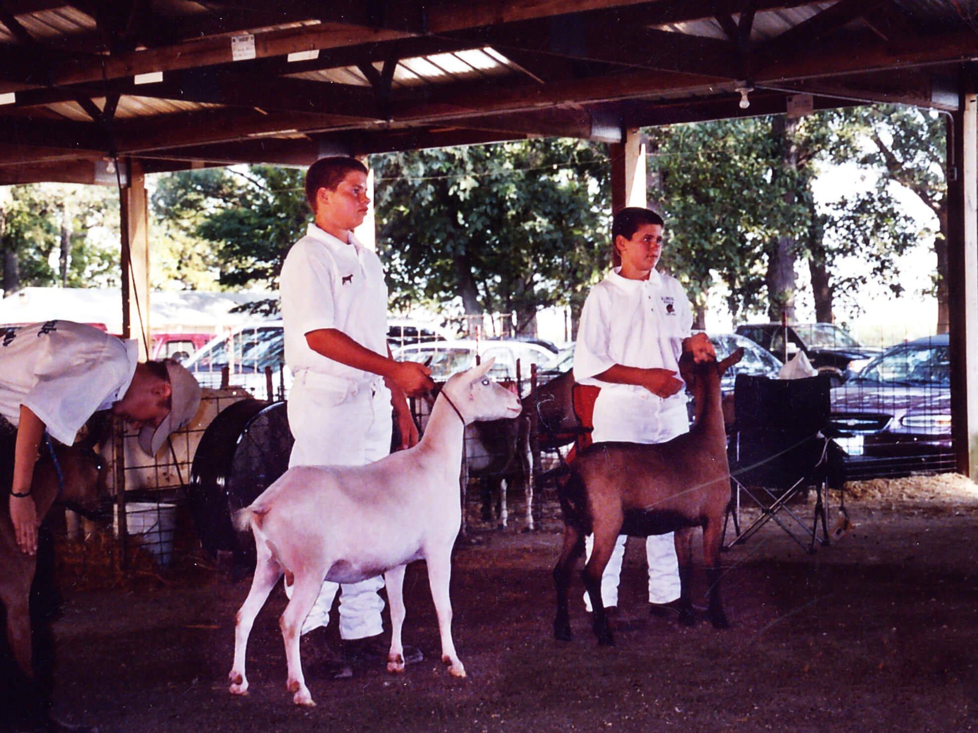 boys holding goats