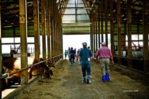 tour group in barn