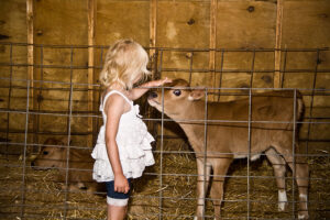 girl and calf